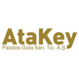 Ate Key Logo